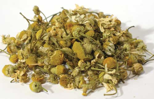 Chamomile Flower 1oz 1618 gold (egyptian)