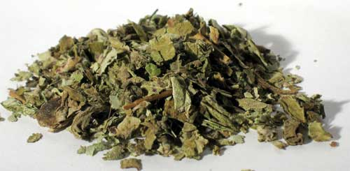 Coltsfoot Leaf cut 1oz 1618 gold